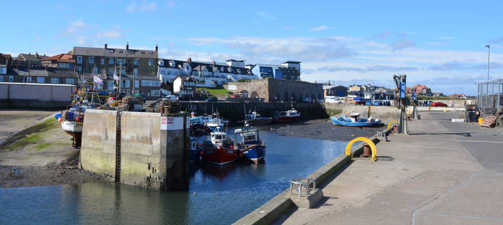 Seahouses North Sunderland Harbour Boat Trip To Farne
