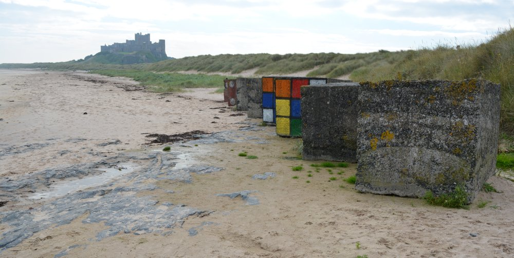 Walking from bamburgh to Budle Bay estuary bird watching