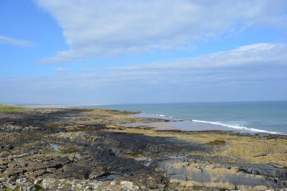 Walking from bamburgh to Budle Bay estuary bird watching beach walk