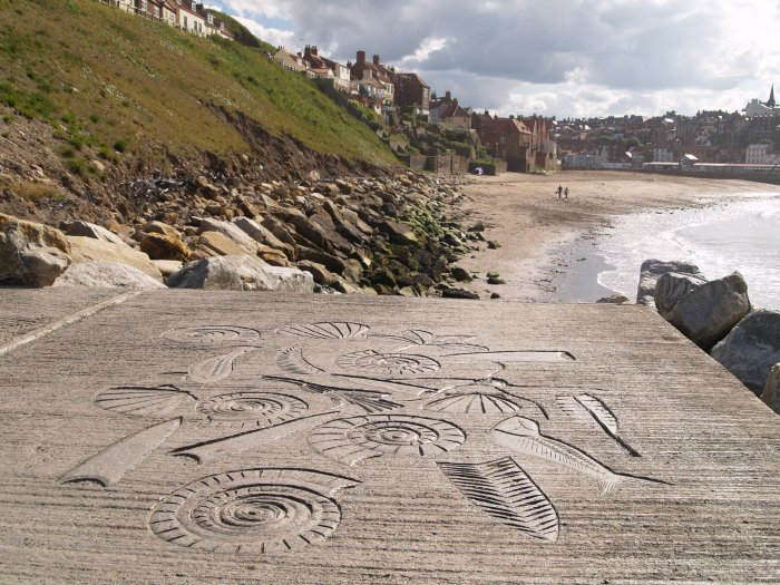 83 Concrete Sculptures Reflecting The Fossils Found In
