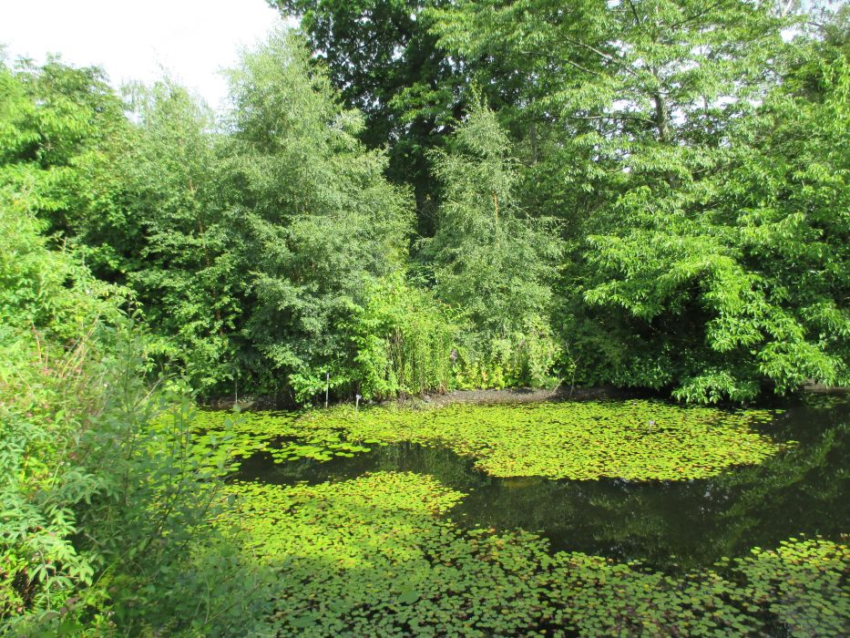 Royal Botanic Garden Edinburgh Plant Collections Walks Images Scotland Scottish Tourist