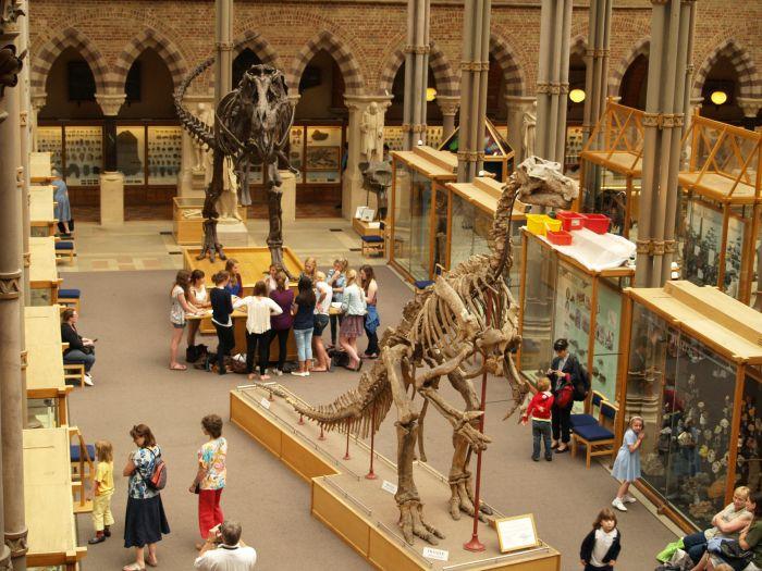 Natural History Oxford