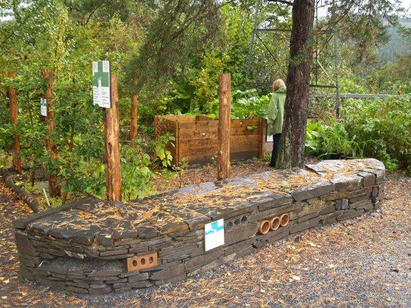 Alternative Garden Ideas