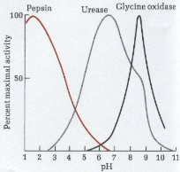 activity of selected enzymes versus pH